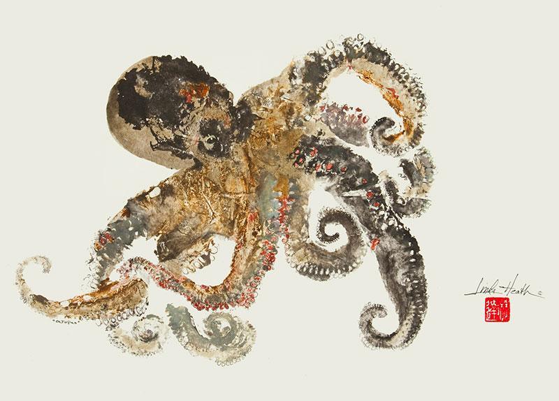 611-Octopus