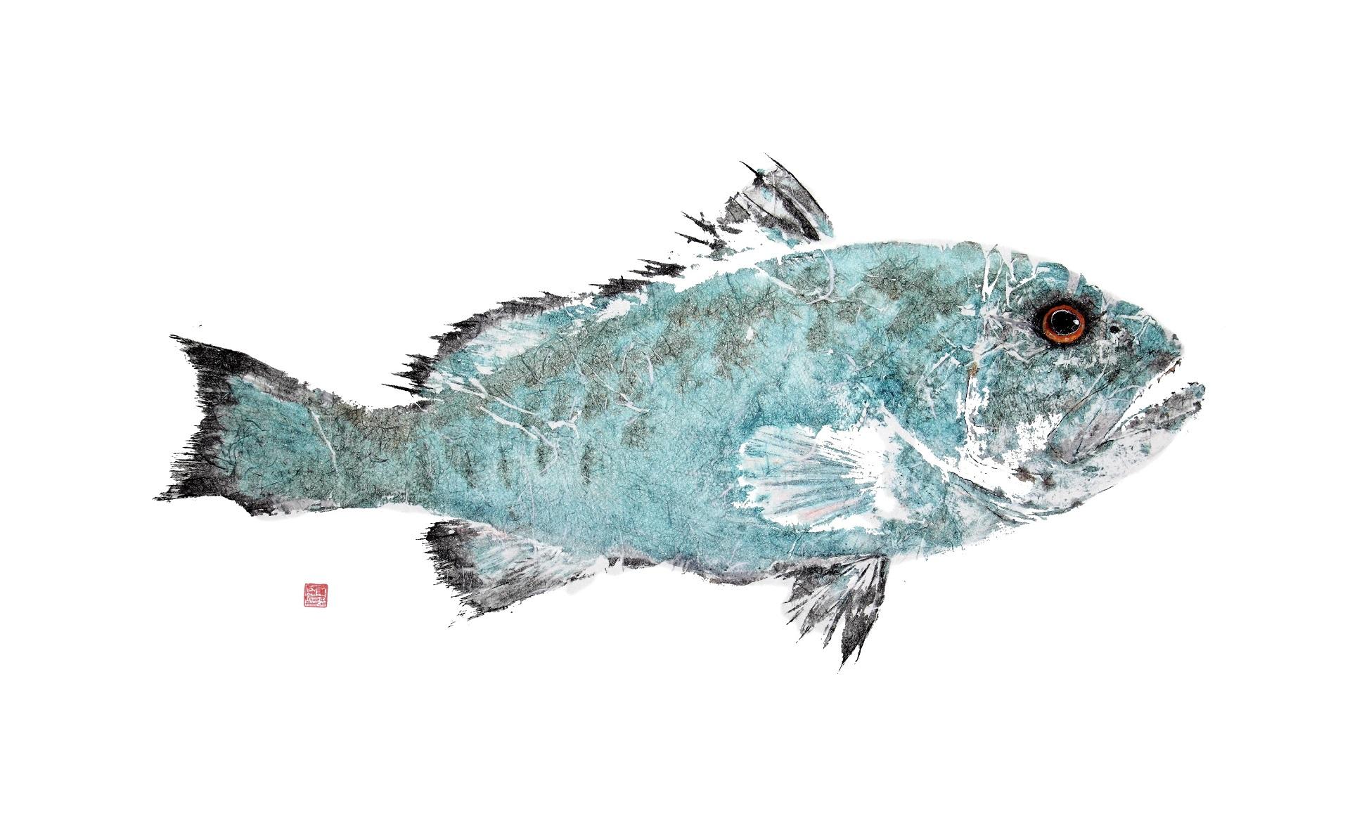 #443 Blue Grouper JPEG