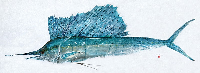 #750 Sailfish JPEG